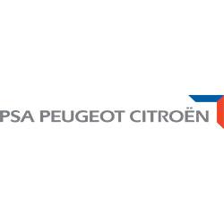 Logo__0011_PSA